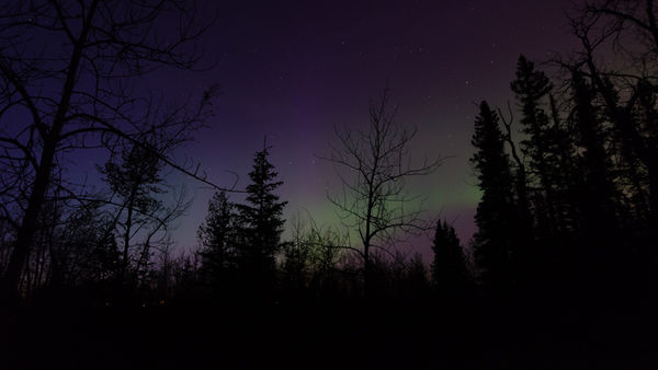 Chinook Council - Scouts Canada Northern lights camping